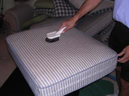 upholstery cleaning_pre groom