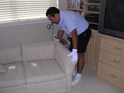 upholstery cleaning_pre inspection