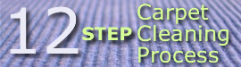 12 Step Carpet Cleaning Program